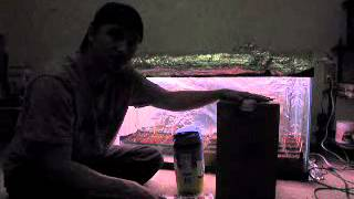 how to build a c02 generator for your plants brain storm build super size your plants