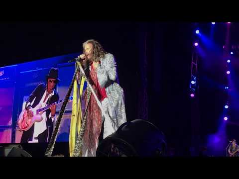Aerosmith - Cryin' - Live Aero-Vederci Baby!