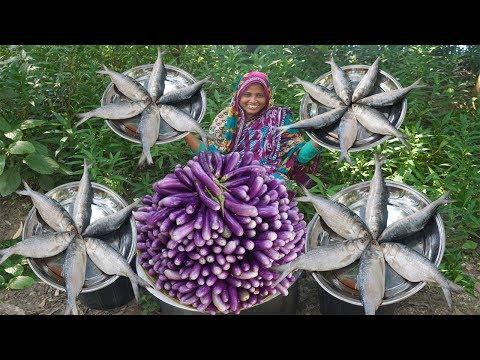 Begun Ilish Er Patla Jhol Recipe Fresh Brinjal Harvesting & Hilsa Fish Cooking For Full Village Kids