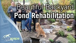 Beautiful Backyard Pond Rehabilitation