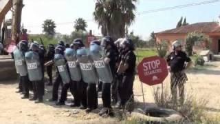 DESAHUCIO JEREZ. Vídeo El Mundo de Andalucía