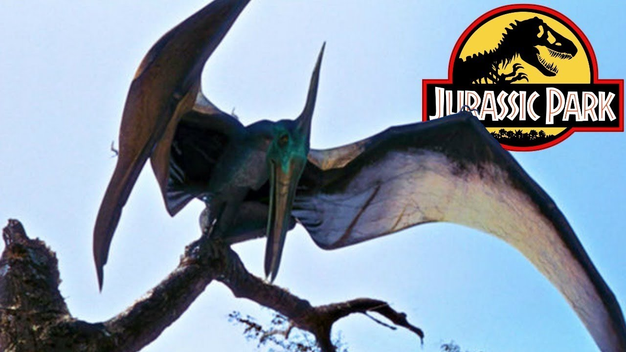 The History of the Pteranodon in the Jurassic Park ...