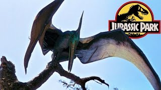 The History of the Pteranodon in the Jurassic Park Franchise