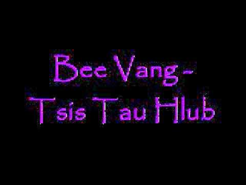 Bee Vang  Tsis Tau Hlub