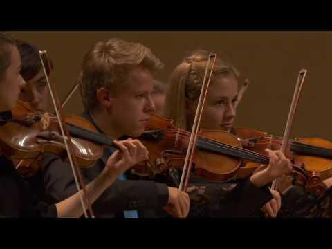 """""""Summer"""" by Antonio Vivaldi - Deutsche Streicherphilharmonie @ YEC2016"""