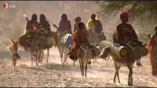 Gärten in der Halbwüste - Sahelzone leidet stark unter dem Klimawandel