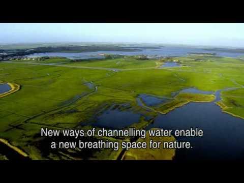 Video (Ypenburg: Forstadsfortætning og klimatilpasning)