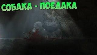 СОБАКА-ПОЕДАКА - DISTRAINT - ПРОХОЖДЕНИЕ #2