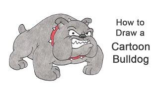 How to Draw a Bulldog (Cartoon)
