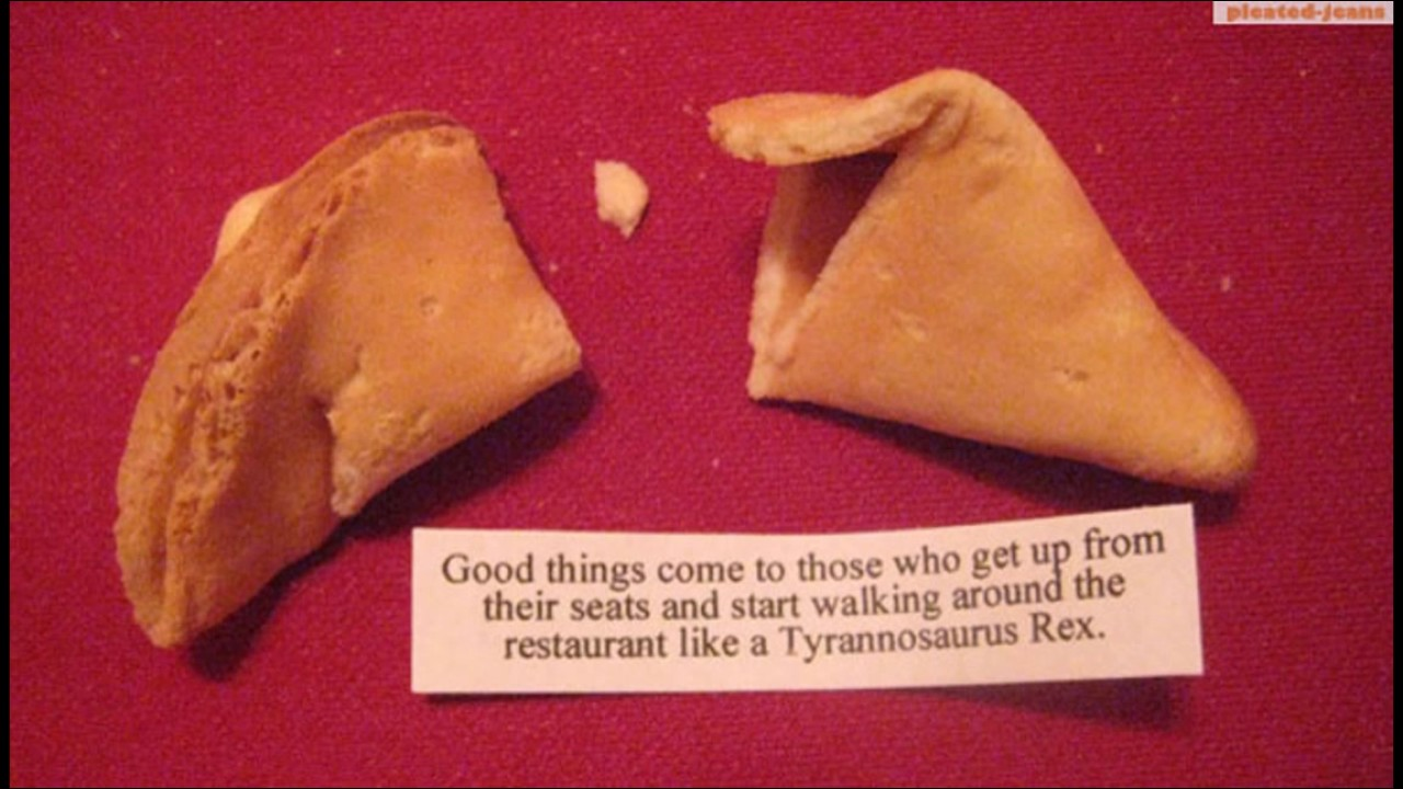 cookie Adult fortune