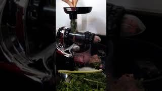 Démonstration Extracteur de jus Hurom Oscar Da1000