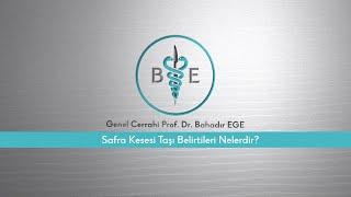 Safra kesesi taşı belirtileri nelerdir? / Prof. Dr. Bahadır Ege