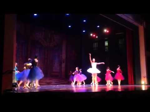 South Florida ballet