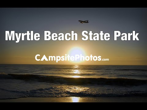 Myrtle Beach State Park South Carolina Campsite Photos