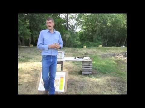 beekeeping,-honeybee-queen-life-cycle