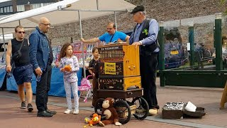"Mini Draaiorgel ( Street Organ ) ""De Veluwenaar"" Braderie 2019 Harderwijk Queen ..Bohemian Rhapsody."