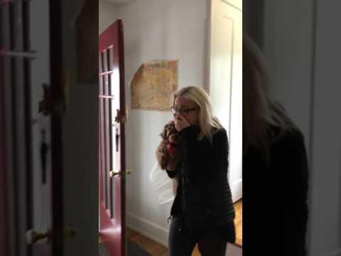 Puppy surprise for her birthday