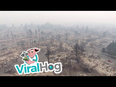 Aftermath of Fire in Santa Rosa, California || ViralHog