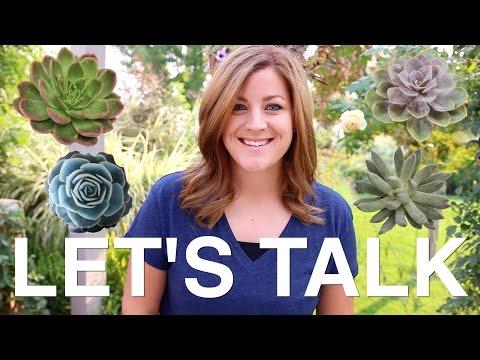 LET'S TALK: Succulent Care & FAQ