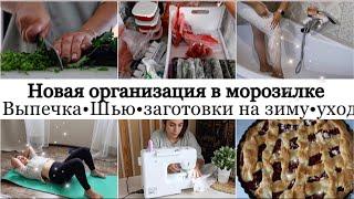 Новая организация и хранение в морозилке рецепт Пирога Заготовки на зиму Порядок и чистота