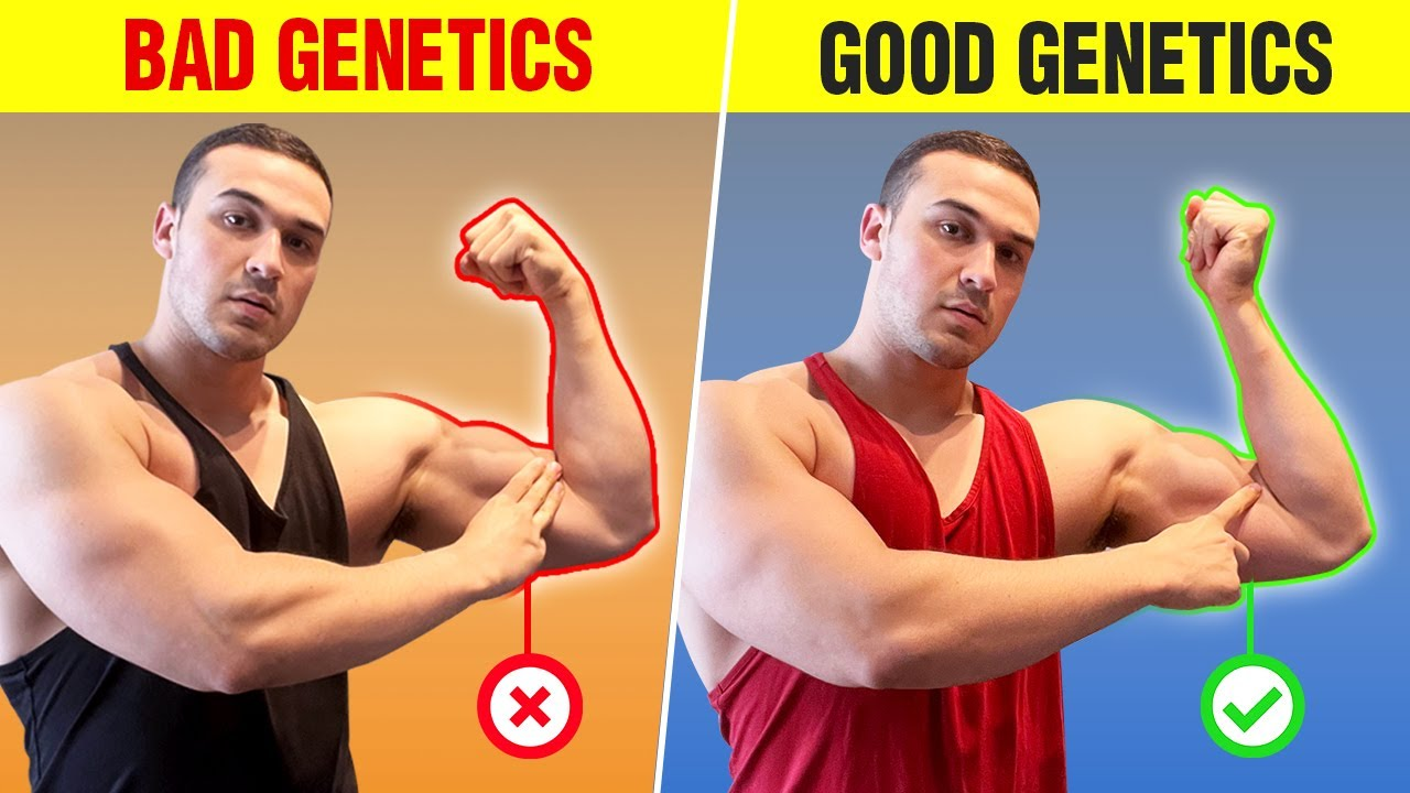 """Download Do You Have """"Good"""" or """"Bad"""" Muscle-Building Genetics? (5 SIGNS)"""