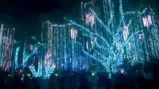 Ayala Triangle Gardens Lights & Sounds Show 2015