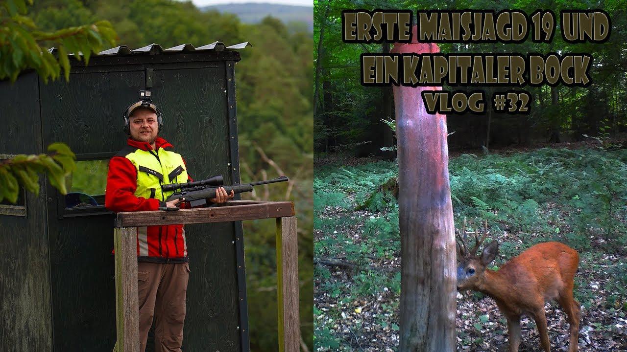 Download RevierLeben / Maisjagd und ein kapitaler Bock // Vlog 32