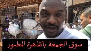 سوق الحمام في القاهرة