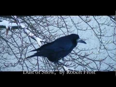 Analysis of Poem Dust of Snow by Robert Frost | Owlcation