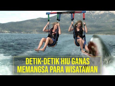 Akibat Tindakan Ceroboh Danau Ini dipenuhi HIU GANAS! - Alur Cerita Film SHARK LAKE (2015)
