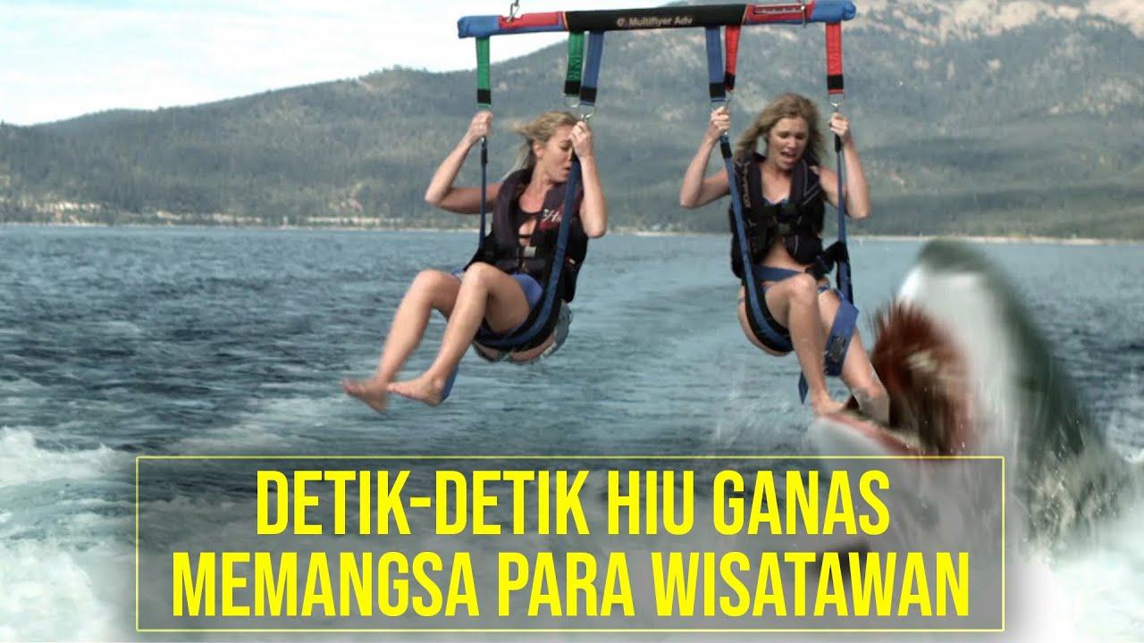 Download Akibat Tindakan Ceroboh Danau Ini dipenuhi HIU GANAS! - Alur Cerita Film SHARK LAKE (2015)
