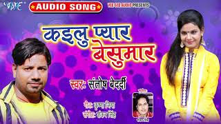 Santosh Brdardi का सबसे दर्द भरा सांग 2019 - Kailu Pyar Besumar - Bhojpuri Sad Song 2019