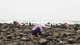 MAC DEMARCO - NOBODY (audio | lyric video) Video