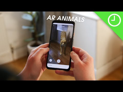 hands-on-with-all-of-google's-3d-animals!