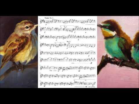 Natursänger, Walzer, Op.415 - Carl Michael Ziehrer (Sheet Music + DL)