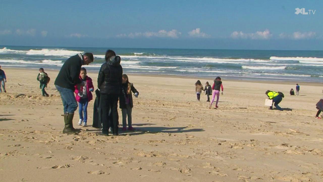 Participons ensemble au nettoyage du littoral landais !