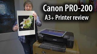 Canon Pixma PRO-200 printer review  -  A3+/13\