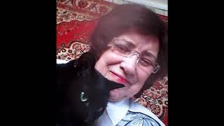 кошка-хозяйка в доме