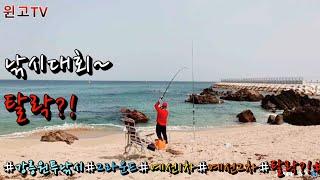 138회 강릉 동해 속초 양양 바다원투 낚시대회 2라운…