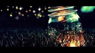 Ricko - Ulat Bulu ( Official Lyric Video) prod By RAV