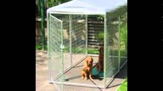 Dog Kennel Outdoor