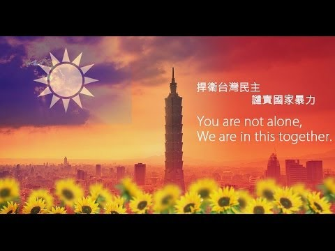 Protect Taiwan, Protect Democracy, Taiwanese Worldwide, We Support You !