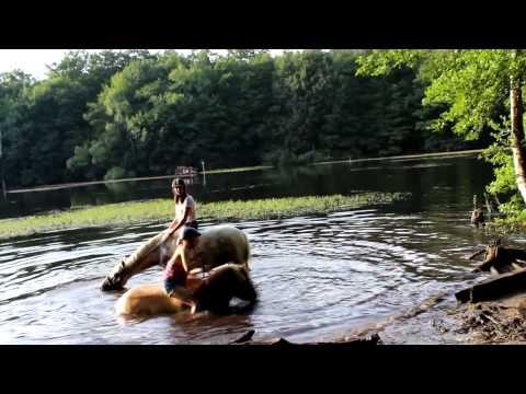 FMA - Mit Den Pferden Im See Schwimmen