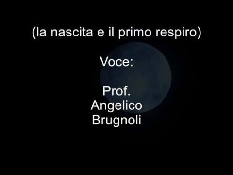 Meditazione Vipassana di Angelico Brugnoli