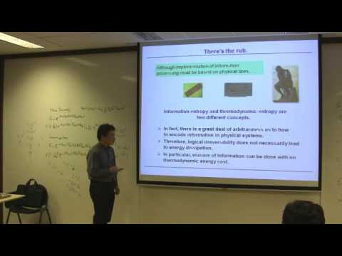 COLLOQUIUM: Information thermodynamics and fluctuation theorems (April 2013)