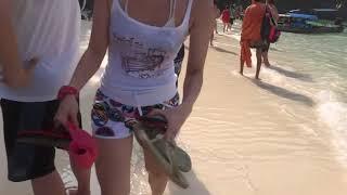 Monkey Beach Phi Phi Island Thailand March 2018
