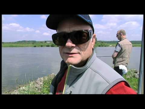 VisbladTV - oppervlakte vissen op winde