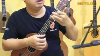 Học đàn Ukulele Bài 6 - Điệu Fox - Đệm hát mặt trời bé con