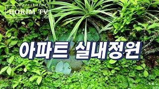 황호림 숲 TV - 아파트 실내정원