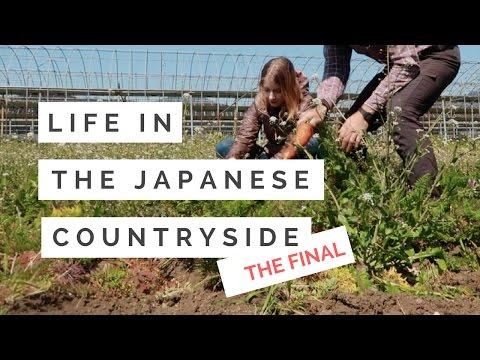 ORGANIC FARMING & SAYING GOODBYE | 宮崎県綾町での田舎暮らし体験